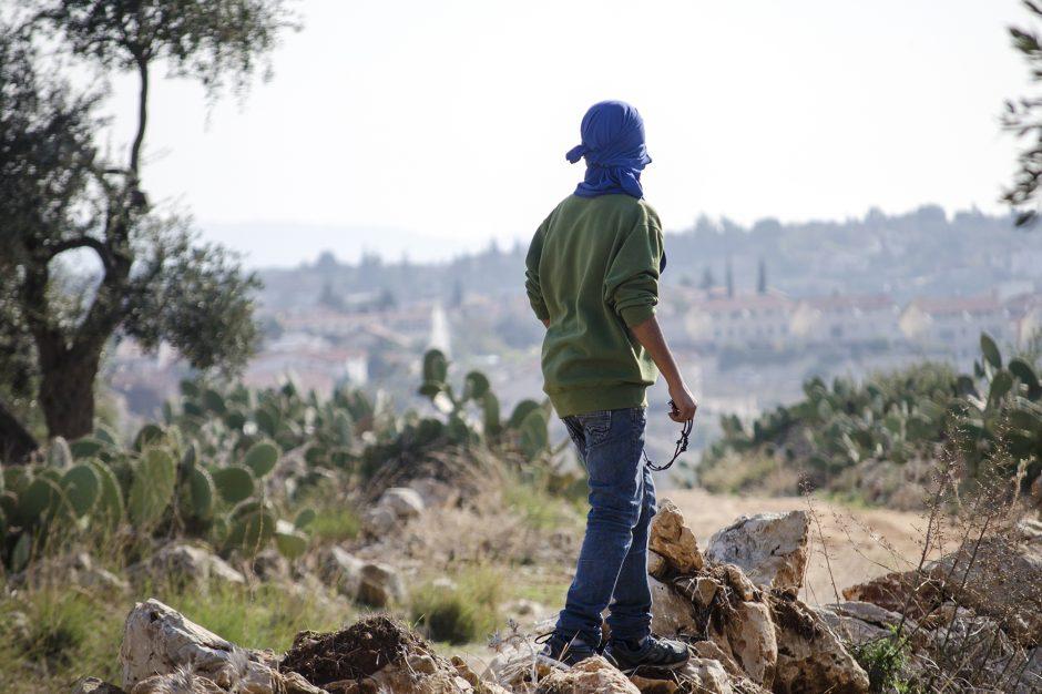 ragazzo palestinese impugna una pietra guardando l'orizzonte del confine